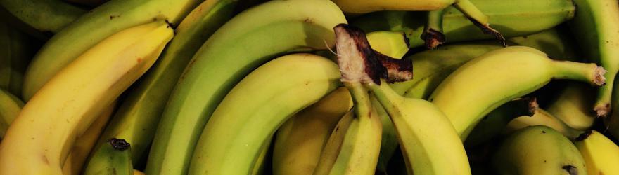 La banane mûrit au Marché Gare