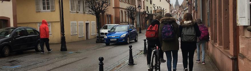 Wissembourg : à la recherche de l'or jeune
