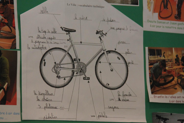 Bien comprendre le fonctionnement d'un vélo.