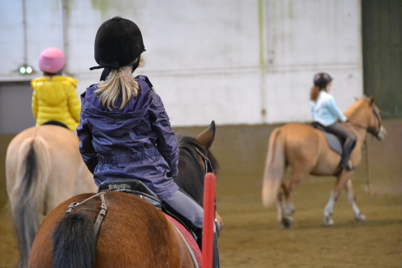 L'association Au Pré de mon cheval a été créée il y a 8 ans par deux cavalières du Club équestre de Strasbourg.
