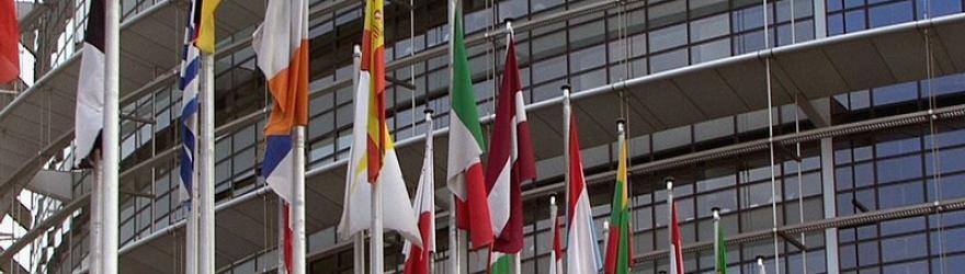 Elections européennes : le Grand-Est poursuit sa recomposition politique