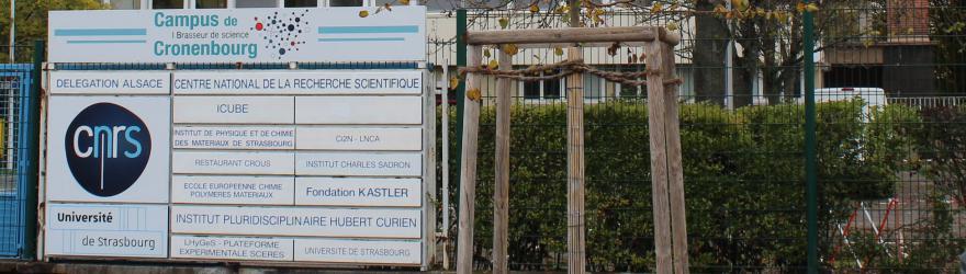 Le CNRS en corps étranger