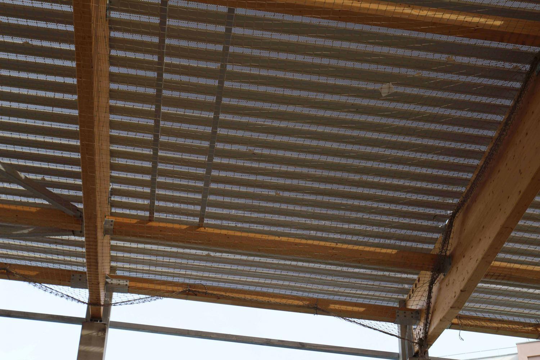 Le toit du gymnase sera végétalisé.