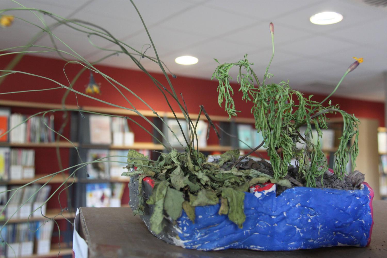 Outre des tableaux et des dessins, la reconstitution de plantes.