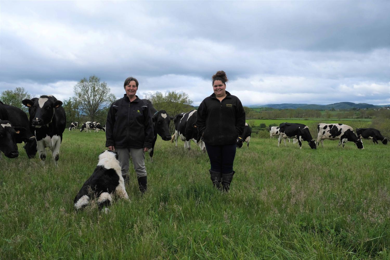 Les associées, Pauline et Eliane, viennent de lâcher leurs vaches à lait, près de leur exploitation à Couteuges