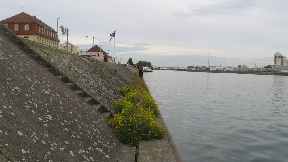 Les pêcheurs pratiquent leur passe-temps favori sur la rive du quai Jacoutot.