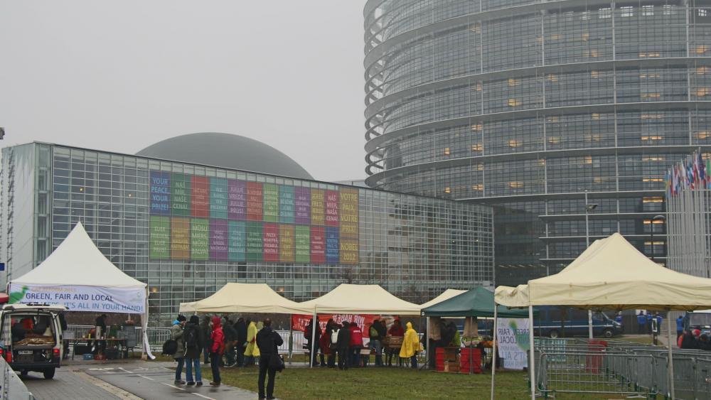 Les organisations écologiques et agricoles ont investi l'entrée du Parlement dès le matin
