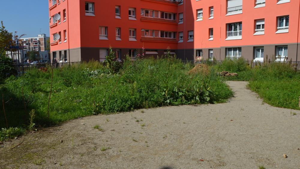 Le jardin de la maille Karine est encore en grande partie en friche.