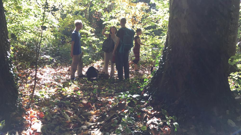 À la recherche d'un coin tranquille en pleine forêt...